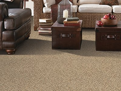 Room Scene of Seaside Delight - Carpet by Mohawk Flooring