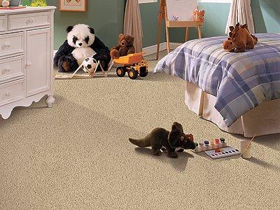 Room Scene of Serene Sierra - Carpet by Mohawk Flooring