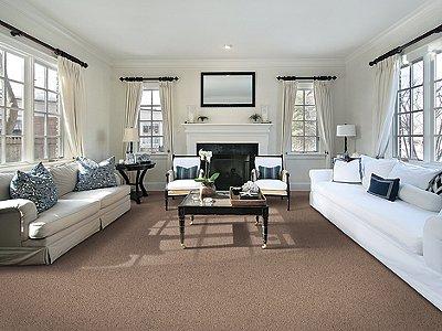 Room Scene of Beautiful Addition - Carpet by Mohawk Flooring