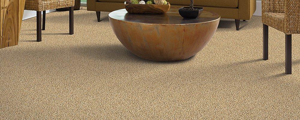 Room Scene of Relaxing Retreat - Carpet by Mohawk Flooring