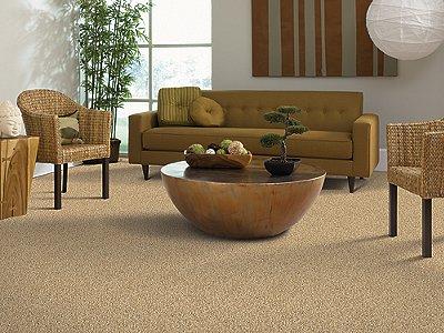 Room Scene of Euphoria - Carpet by Mohawk Flooring
