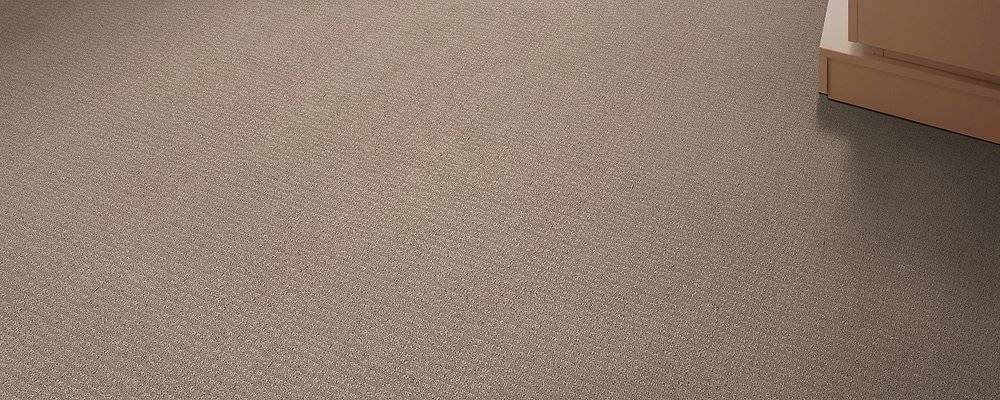 Room Scene of Pristine View - Carpet by Mohawk Flooring
