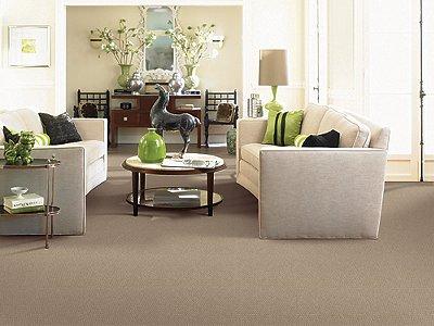 Room Scene of Pure Refinement - Carpet by Mohawk Flooring