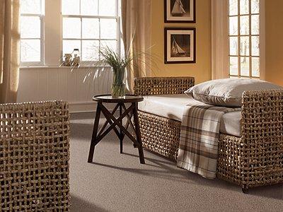 Room Scene of Visual Comfort - Carpet by Mohawk Flooring