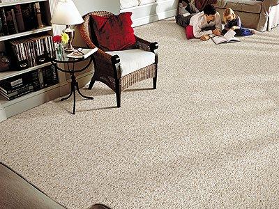 Room Scene of Fernwood Forest - Carpet by Mohawk Flooring