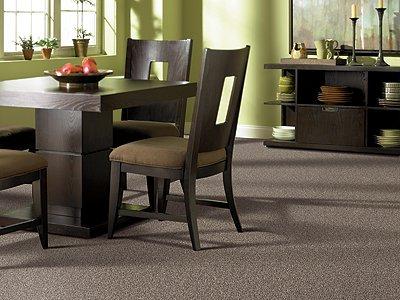 Room Scene of Tonal Essence - Carpet by Mohawk Flooring