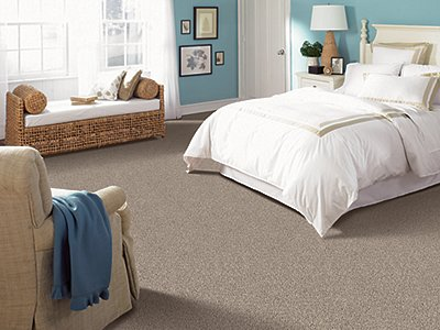 Room Scene of Tonal Nature - Carpet by Mohawk Flooring