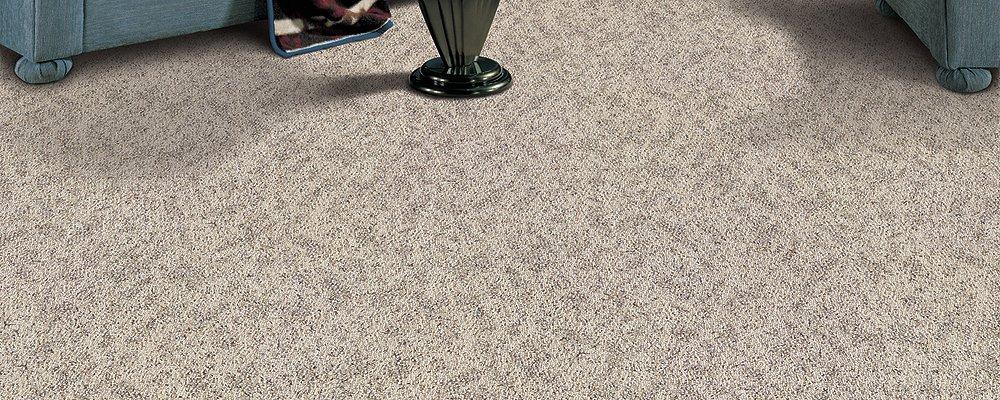 Room Scene of Pennington Park - Carpet by Mohawk Flooring