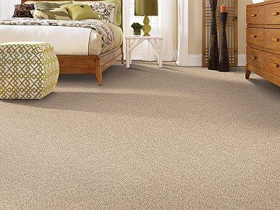 Room Scene of Priv Collection I - Carpet by Mohawk Flooring