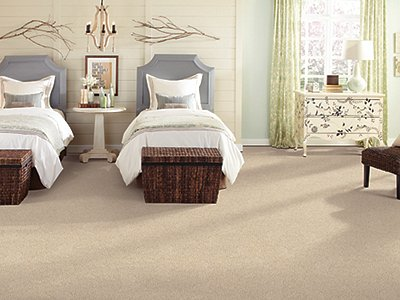 Room Scene of Lively Intuition - Carpet by Mohawk Flooring