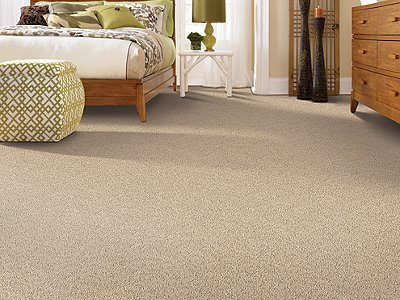 Room Scene of Relaxed Moment III - Carpet by Mohawk Flooring