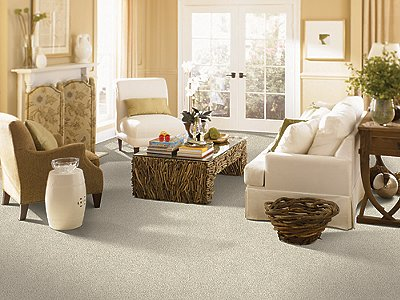 Room Scene of Classic Attraction - Carpet by Mohawk Flooring