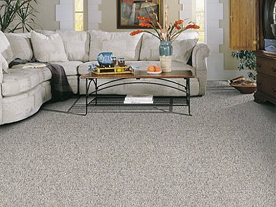 Room Scene of Key Elements - Carpet by Mohawk Flooring