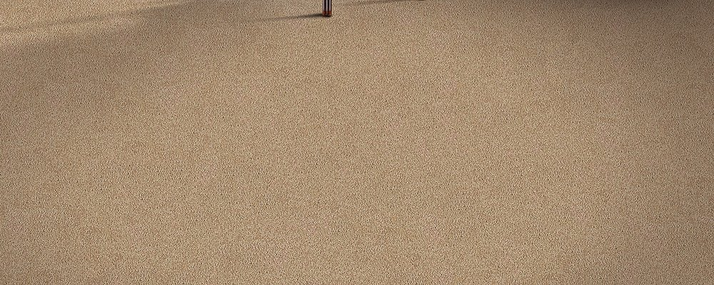 Room Scene of All's Fair - Carpet by Mohawk Flooring