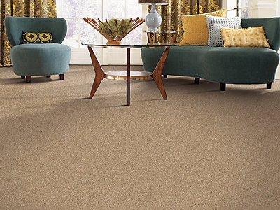 Room Scene of Crowd Favorite - Carpet by Mohawk Flooring