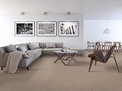 Room Scene of Nature's Appeal II - Carpet by Mohawk Flooring