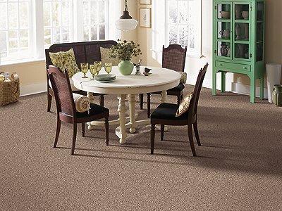 Room Scene of Shoreline - Carpet by Mohawk Flooring