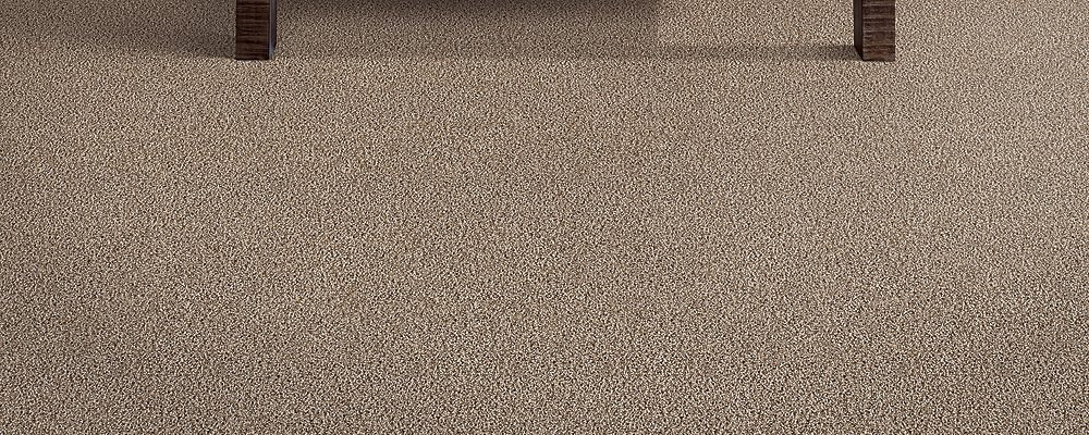 Room Scene of Distinct Beauty II - Carpet by Mohawk Flooring