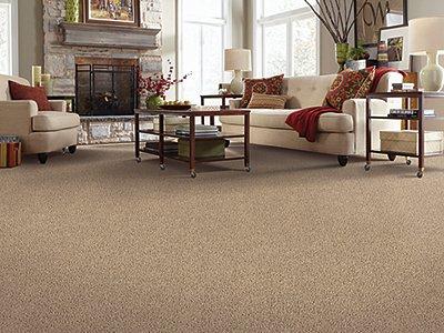 Room Scene of Tender Moment - Carpet by Mohawk Flooring