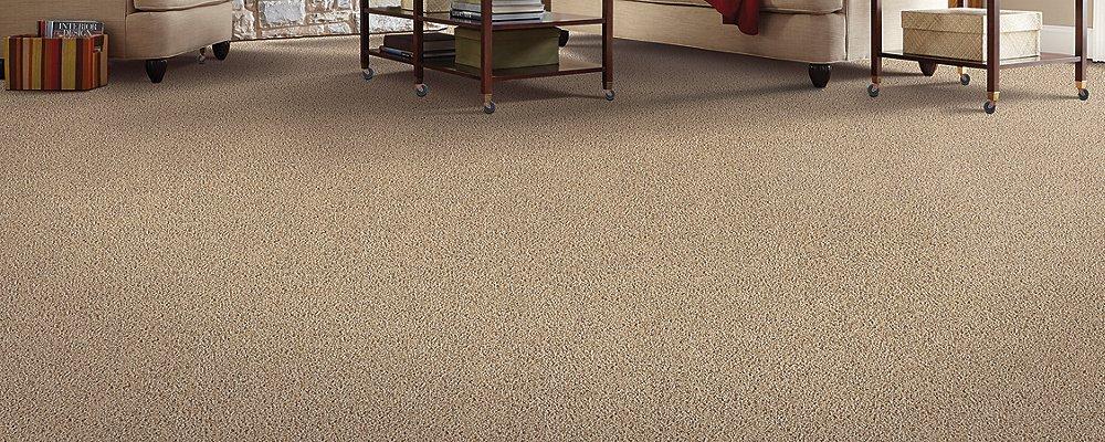Room Scene of Lifetime Achievement - Carpet by Mohawk Flooring