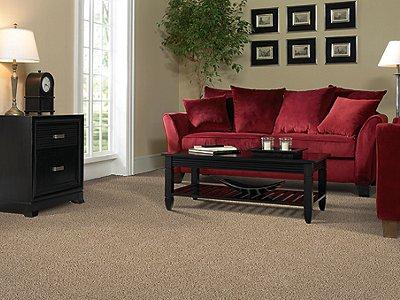 Room Scene of Fan Club - Carpet by Mohawk Flooring