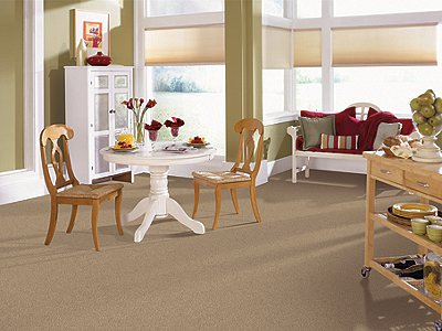 Room Scene of Magical Color - Carpet by Mohawk Flooring