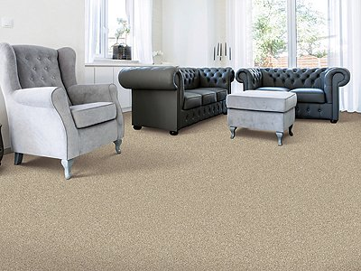 Room Scene of Earthly Details I - Carpet by Mohawk Flooring