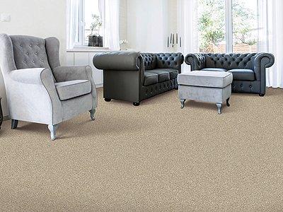 Room Scene of Modern Landscape I - Carpet by Mohawk Flooring