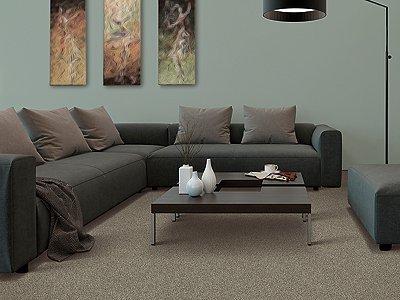 Room Scene of Earthly Details II - Carpet by Mohawk Flooring