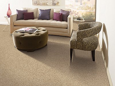 Room Scene of Atlantic Coast - Carpet by Mohawk Flooring