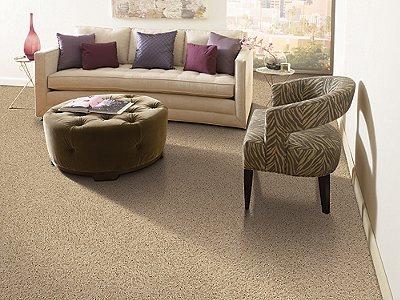 Room Scene of Brookfield Heights - Carpet by Mohawk Flooring