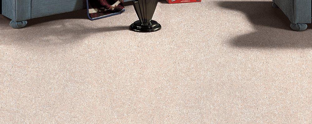 Room Scene of Active Spirit - Carpet by Mohawk Flooring