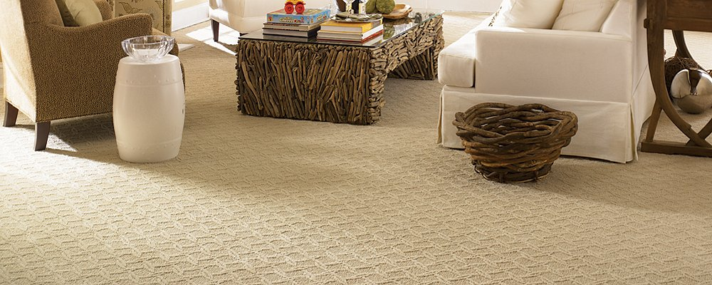 Room Scene of Dream Journey - Carpet by Mohawk Flooring