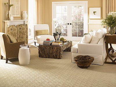 Room Scene of Natural Glory - Carpet by Mohawk Flooring