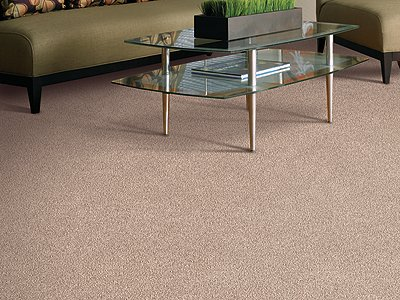 Room Scene of Simply Soft I - Carpet by Mohawk Flooring