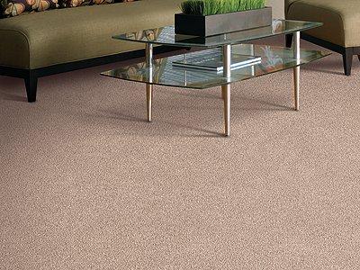 Room Scene of Global Allure I - Carpet by Mohawk Flooring