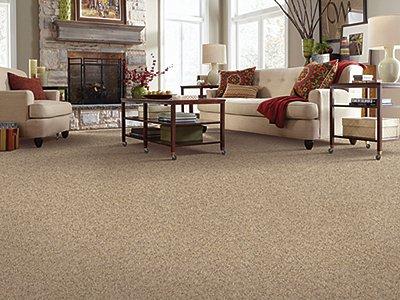 Room Scene of Tender Resolve II - Carpet by Mohawk Flooring
