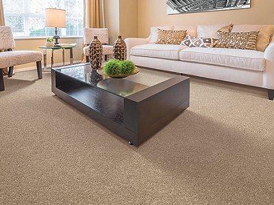 Room Scene of Natural Terrace - Carpet by Mohawk Flooring
