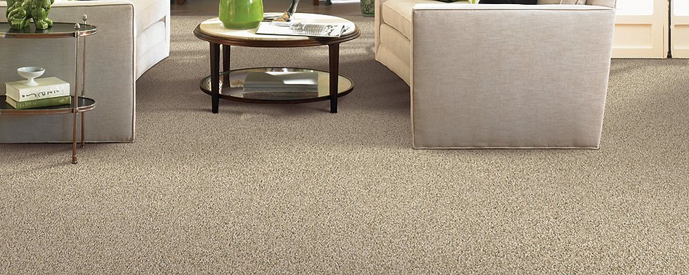 Room Scene of Delightful Character - Carpet by Mohawk Flooring