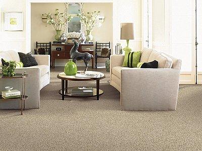Room Scene of Delightful Character - Carpet by Mohawk Flooring