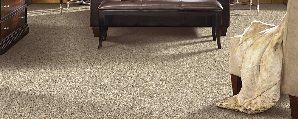 Room Scene of Pleasing Qualities - Carpet by Mohawk Flooring