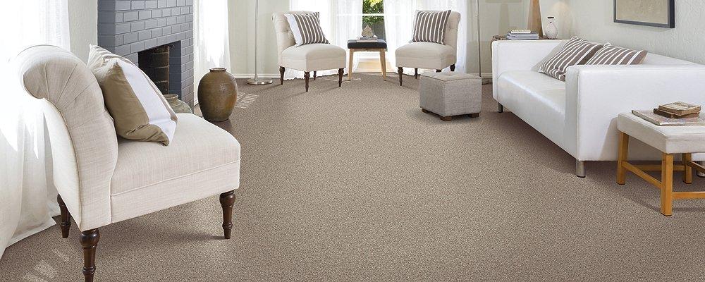 Room Scene of Tonal Chic I - Carpet by Mohawk Flooring