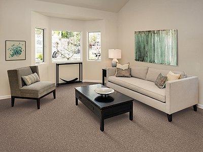 Room Scene of Color Medley I - Carpet by Mohawk Flooring