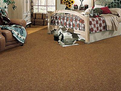 Room Scene of Salsa - Carpet by Mohawk Flooring