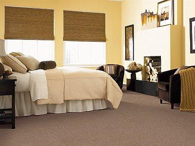 Room Scene of Bellevue Terrace - Carpet by Mohawk Flooring