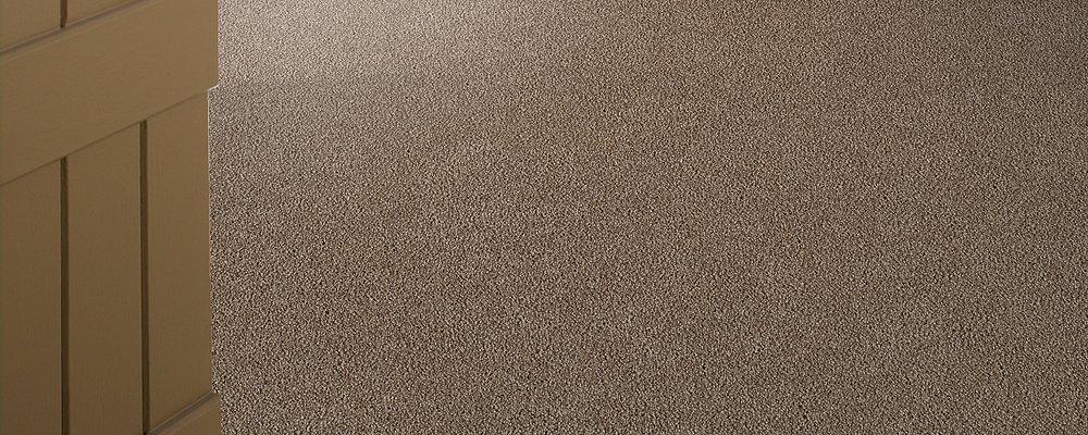 Room Scene of Coastal Path II - Carpet by Mohawk Flooring
