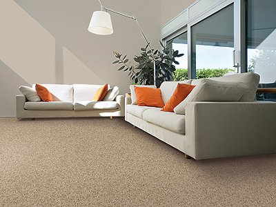 Room Scene of Perfectly Composed Fleck - Carpet by Mohawk Flooring