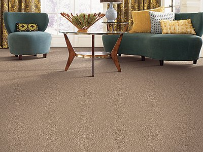 Room Scene of Edgewood Estates - Carpet by Mohawk Flooring