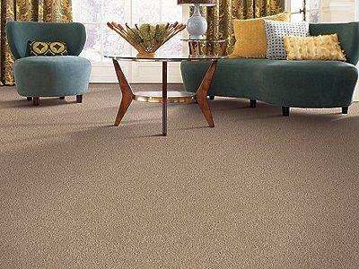 Room Scene of Grande Vision - Carpet by Mohawk Flooring