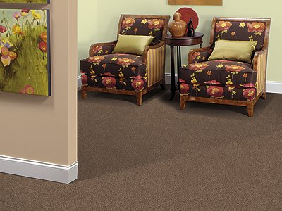 Room Scene of Coastal Path III - Carpet by Mohawk Flooring